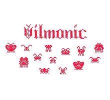 Vilmonic Photographic Print