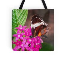 Butterfly on Pink Penta Flowers Tote Bag