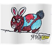 The Amazing Spider-Bunny! Poster