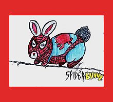 The Amazing Spider-Bunny! by Jet Mejia