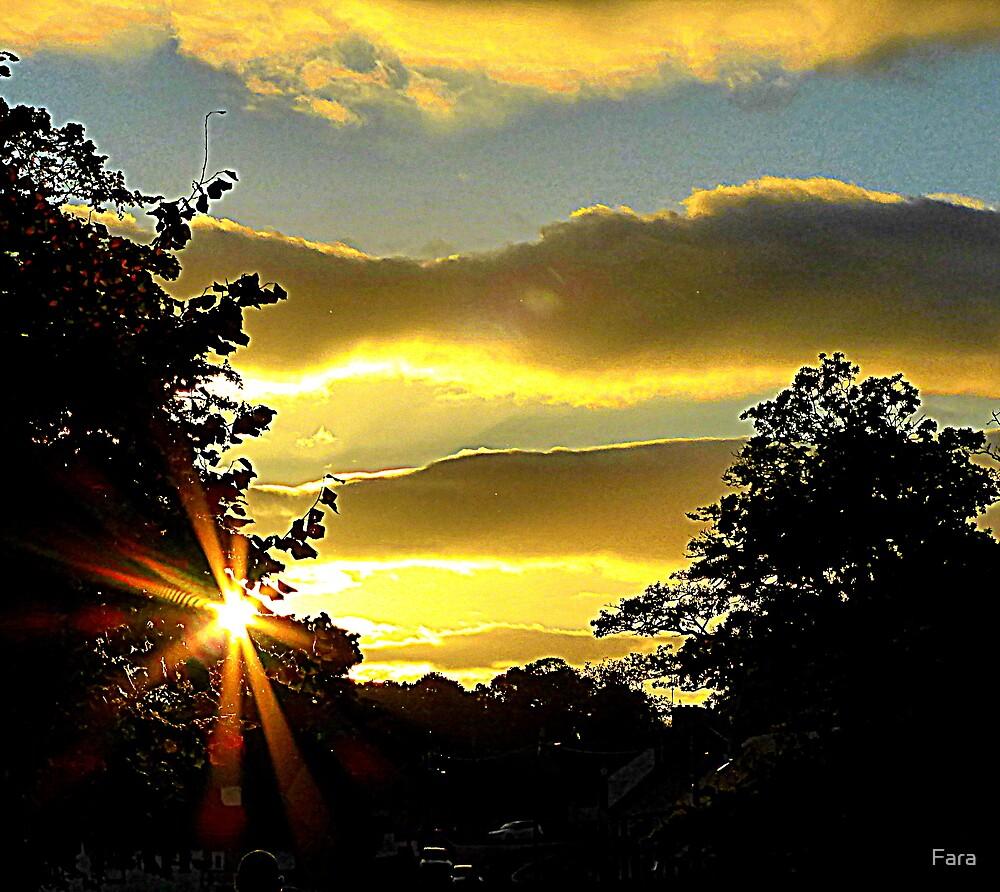 Sunburst by Fara