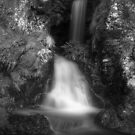 Wee Waterfall (4) by Tim Haynes