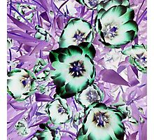 Psychedelic Blooms Photographic Print