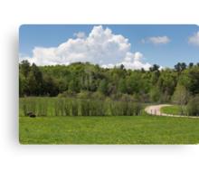 Park Landscape Canvas Print
