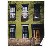 Green Facade. Poster