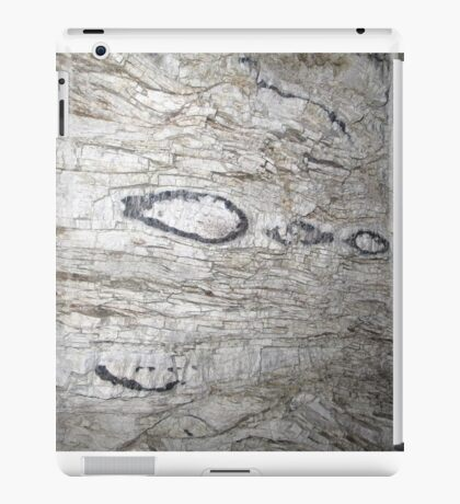 Flint Bands iPad Case/Skin