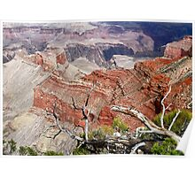Sedimentary Red Poster