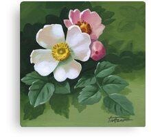 Eglantine - acrylic painting Canvas Print