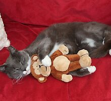 Smokey and his Toy Monkey by AnnDixon