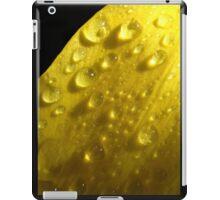Rainy jewels  iPad Case/Skin