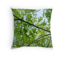Spring Lines Throw Pillow