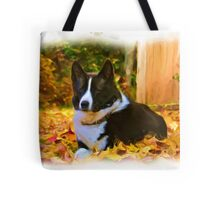 RunningBearDog Karelians - Golden Leaf Drop Tote Bag