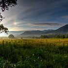 June Morning in Cades Cove HDR by photodug