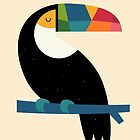 Rainbow Toucan by AndyWestface
