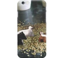 Account Manager iPhone Case/Skin