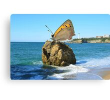 Product Of France Canvas Print