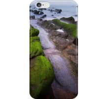 Dragon Ridges iPhone Case/Skin