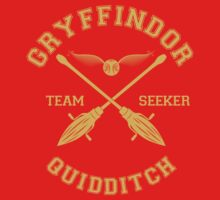 Quidditch - Gryffidor - Team Seeker by Divum