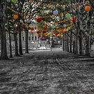 Garden Party by Adam Northam