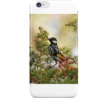 White Cheeked Honeyeater iPhone Case/Skin