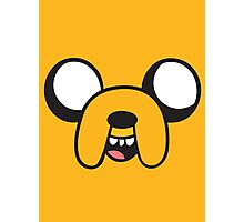 Yellow dog Photographic Print
