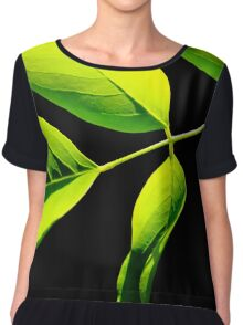 Lime Green on Black Chiffon Top