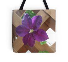 Purple Through Lattice Tote Bag
