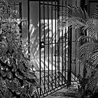 Come In!  by John  Kapusta
