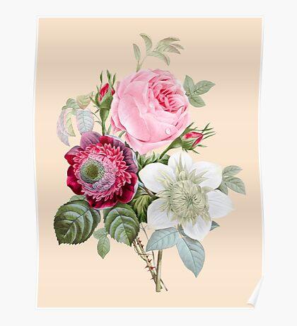 Rose Botanical Floral on Vintage Pink Poster