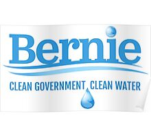 Bernie - Clean Government. Clean Environment Poster