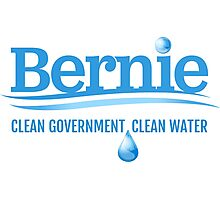 Bernie - Clean Government. Clean Environment Photographic Print