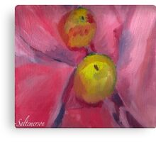 Pink Lady Apple Green Canvas Print