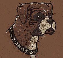 The Boxer Dogs by RonanLynam