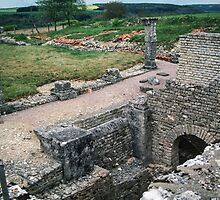 Excavations in remains of Vercingetorix's camp fortifications Alise S Reine France 198405030040 by Fred Mitchell