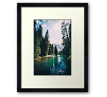 Northern Forest Framed Print