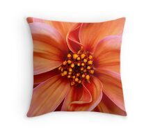Sunset Condensed Throw Pillow