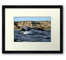 Whale tail and the cliff Framed Print
