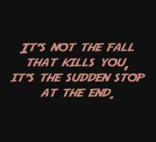 It's not the fall that kills you; it's the sudden stop at the end. by SlubberBub