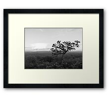 Strong Facing the Storm Framed Print