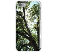 Up! iPhone Case/Skin