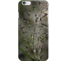 Dewdrops at Dawn iPhone Case/Skin
