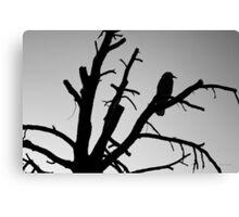 Raven Tree II BW Canvas Print
