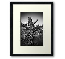 Strong Populus Framed Print