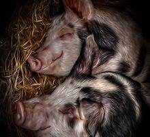 So Piggin Funny  by outlawalien