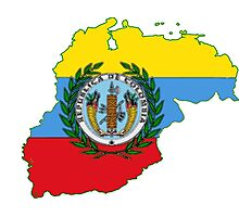 Colombia Map with Colombian Flag Photographic Print