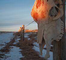 Skeletal Sentries by Coniferous