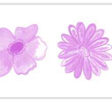 Pink Blossoms Sticker