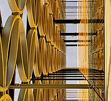 Golden Hoops by jcwoody