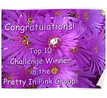 Pretty in Pink Top Ten Challenge Banner Poster