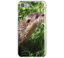 Wet and Cute Otter on the Grass iPhone Case/Skin